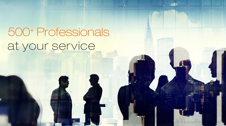 500 Plus professionals at your service - mobile