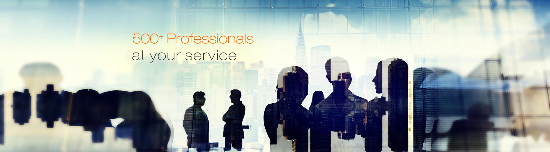 500 Plus professionals at your service